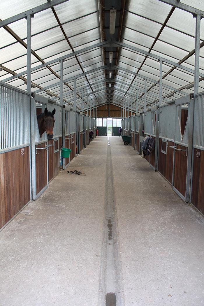 Contrak Ltd, Equestrian